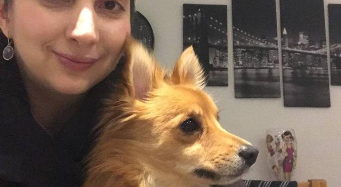 True dog lover, dog sitter in Ormskirk, UK