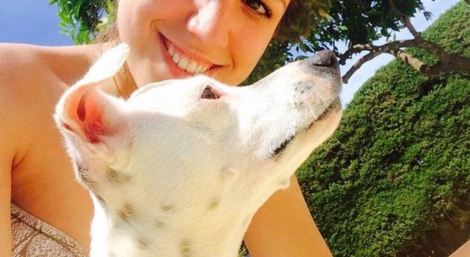 Una vida sin perros es un error. Bienvenidos!!, canguro en Sevilla