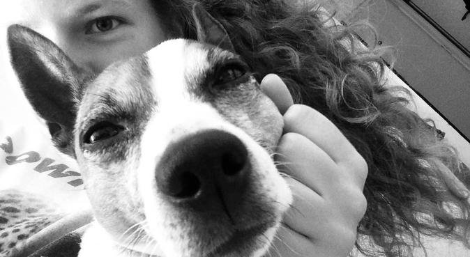 Doglover who will love your dog more than anything, dog sitter in Cambridge