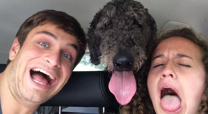 Dog-loving couple looking for dogs to cuddle, dog sitter in Kings Langley, UK