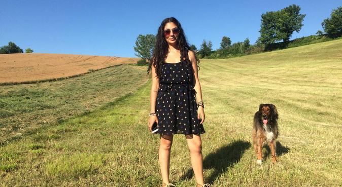 Lunghe passeggiate e momenti giocosi nei parchi, dog sitter a Modena, Province of Modena, Italy