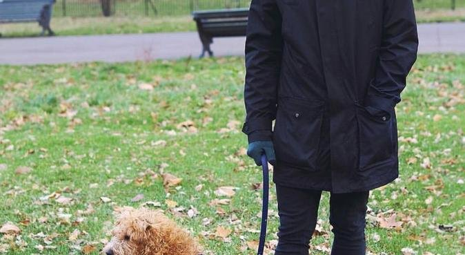 The Smiley Dog Walker Guy, dog sitter in Ilford