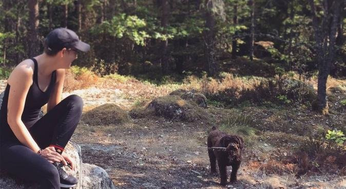 Hundkär student på Campus, hundvakt nära Växjö, Sverige