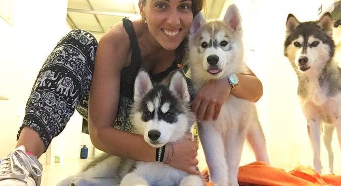 Paseos  y mimas para todos los perros, canguro en Las Palmas de Gran Canaria, Spagna
