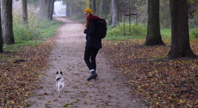 Dog super care Amsterdam, hondenoppas in Amsterdam