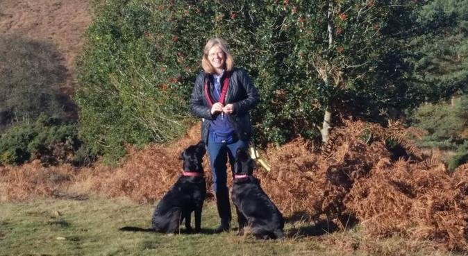 Daily walks on the Ashdown Forest!, dog sitter in Sharpthorne