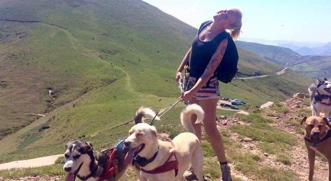 Promenades au grand air sur la côte basque, dog sitter à Biarritz