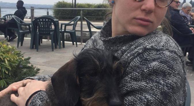 In primavera a spasso con i vostri amici cani!, dog sitter a Verona, VR, Italia