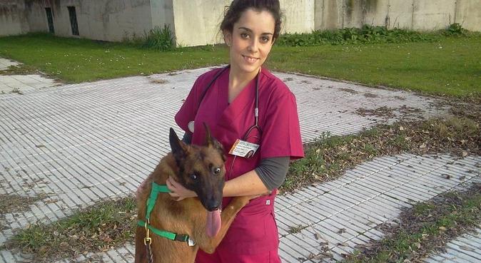 Futura veterinaria para pasear a tu amigo peludo!, canguro en Madrid