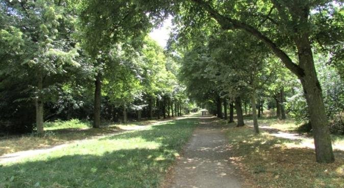 Promenades du bonheur, dog sitter à Paris