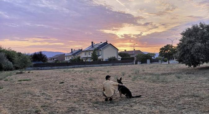 Estudiante de Veterinaria cuida y pasea su madcota, canguro en Las Rozas, España