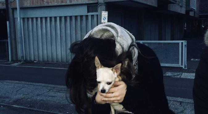 Giochi e passeggiate in giro per Bologna!, dog sitter a Bologna