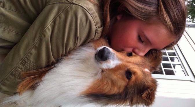 Trygg, kärleksfull hundpassning, hundvakt nära Tibro