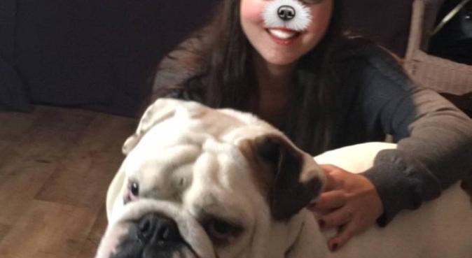 Bienvenu aux toutous, dog sitter à Montpellier, France