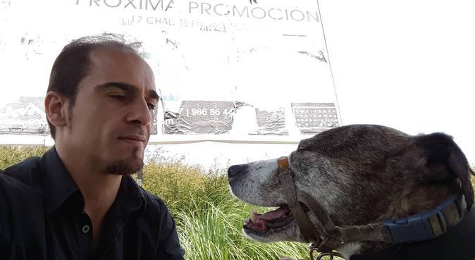 Paseadora de perros, canguro en Pontevedra, España