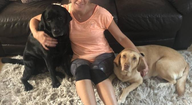 Fun and cuddles in a home from home., dog sitter in Fareham