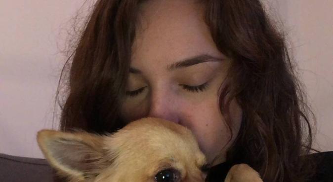 L'amoureuse des toutous, dog sitter à Montpellier, France