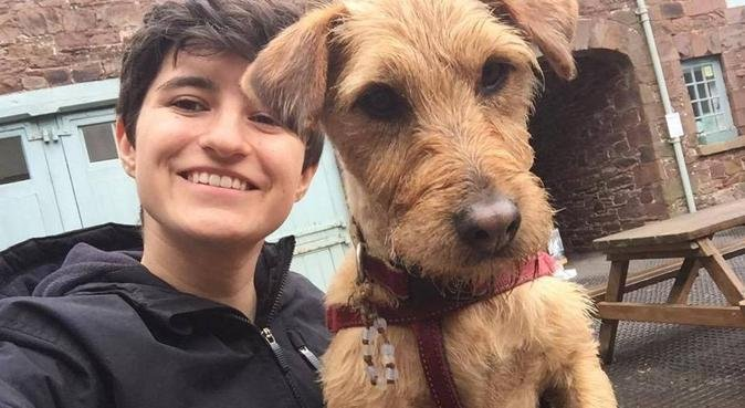Dog adventures in Plymouth, dog sitter in Plymouth