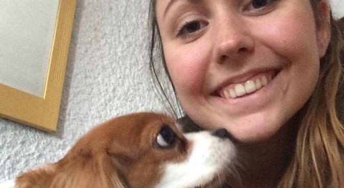 Hundevenn, hundepassere i Kristiansand