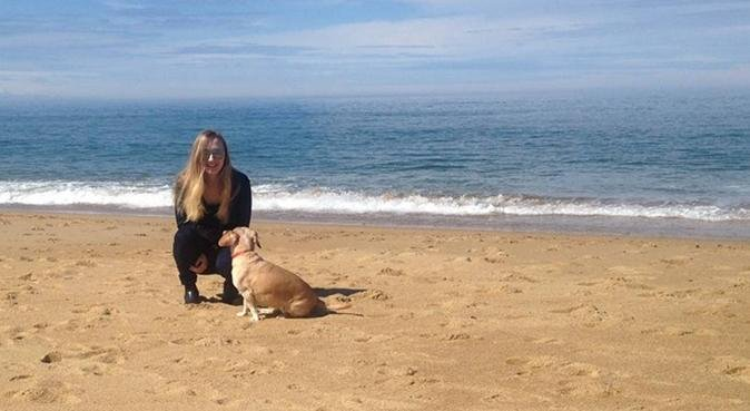 Tous les chiens sont les bienvenus!, dog sitter à Bayonne