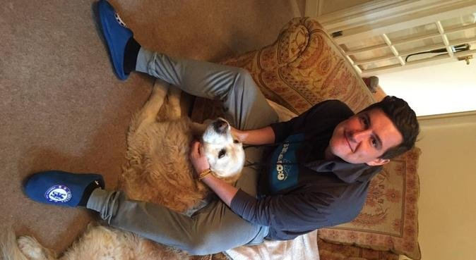 Paws for thought, dog sitter in Chertsey
