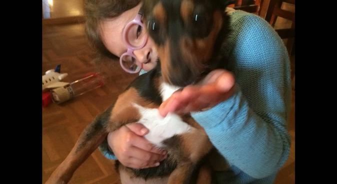 Pisito acogedor para perros, canguro en Alcalá de Henares