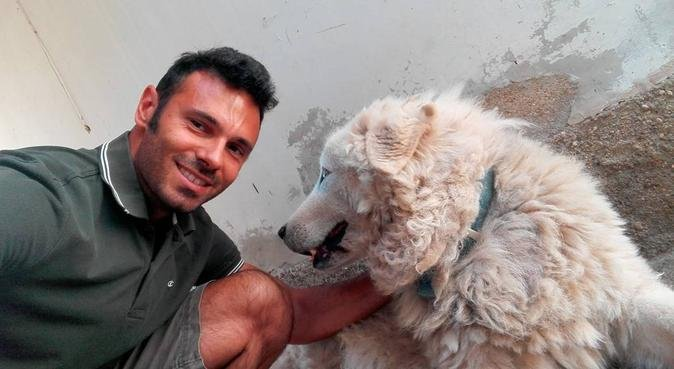 Passione e serietà!, dog sitter a Modena, MO, Italia