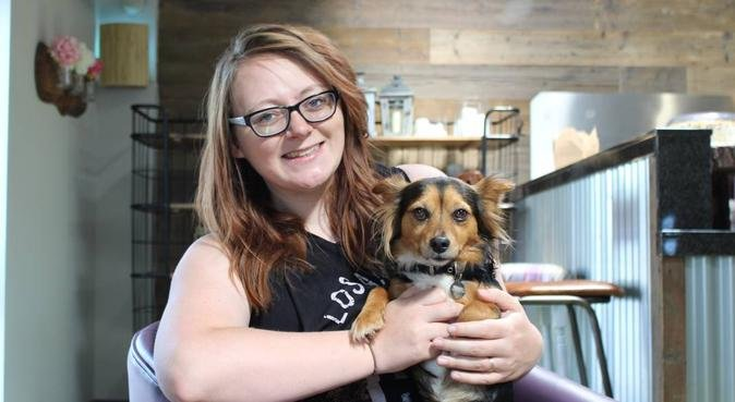 Dog Furiendly Walks in Cwmbran, dog sitter in Cwmbran
