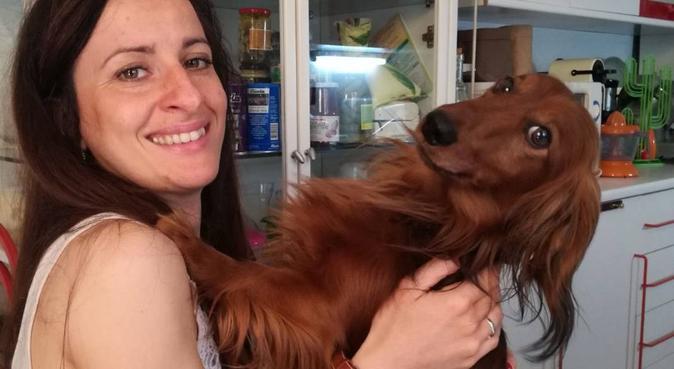 Coccole e passeggiate, dog sitter a Modena, MO, Italia