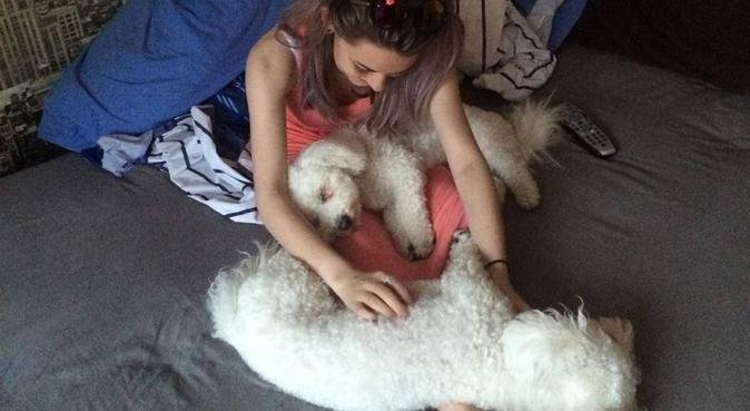Dog walker in Broughton, dog sitter in Broughton