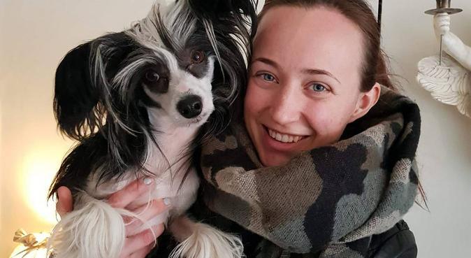 Kärleksfull hundpassning på Telefonplan, hundvakt nära Stockholm
