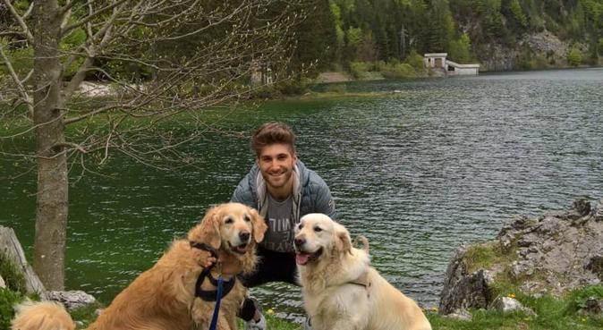 Lunghe passeggiate e coccole per i vostri cani, Hundesitter in Nürnberg