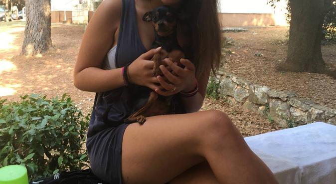 Tante passeggiate per i vostri cuccioli, dog sitter a Parma, PR, Italia