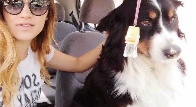 Giochi, coccole e passeggiate in abbondanza😘😁, dog sitter a Padova, PD, Italia