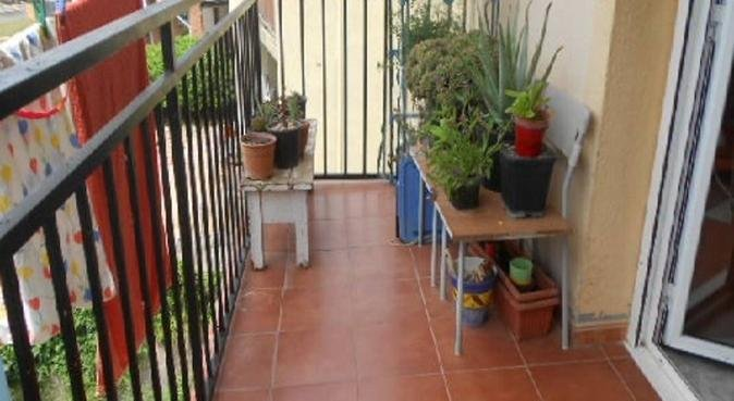Mucho espacio para tu perro, canguro en Lloret de Mar