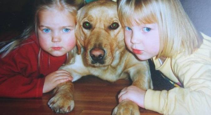 25 års hundeerfaring, elsker tur i dritvær., hundepassere i BERGEN
