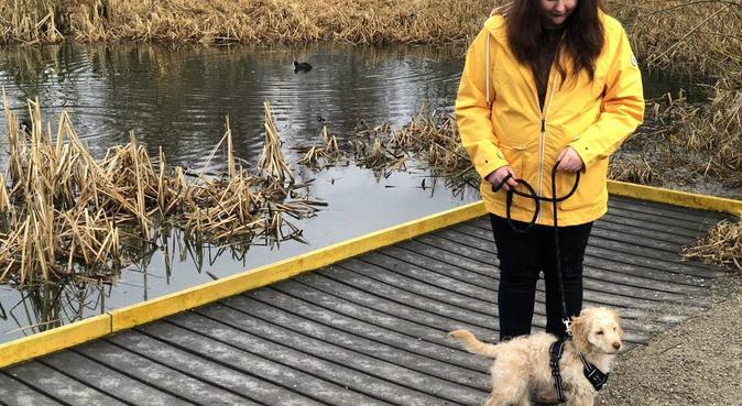 Pet visit service, dog sitter in Leeds