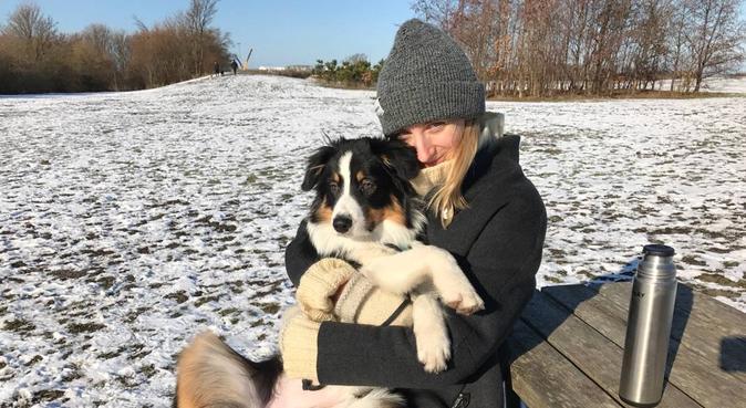 Aktiv och närvarande hundpassning kring St Knut, hundvakt nära Malmö