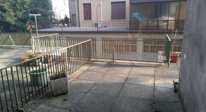 Soggiorni e passeggiate, dog sitter a Padova, PD, Italia