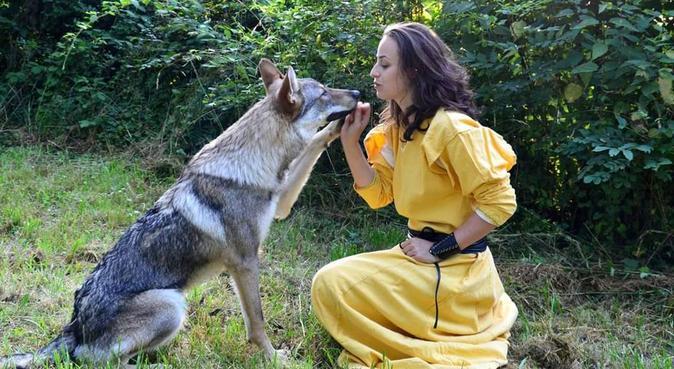 Promenade tranquille ou sportive à Lyon, dog sitter à LYON