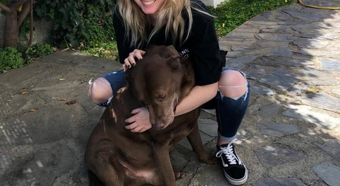 Oh Happy Dog - Castanet Tolosan, dog sitter à Castanet-Tolosan