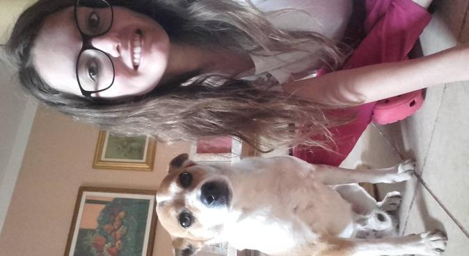 Passeggiate e tante coccole con l'amante dei cani, dog sitter a Verona