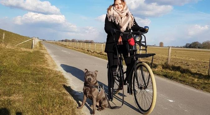 Hondenoppas in Spijkenisse, hondenoppas in Spijkenisse