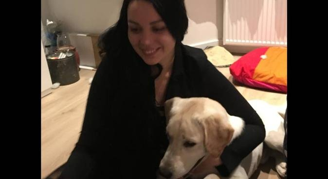 Experienced, loving help with your dog, hondenoppas in Zaandam