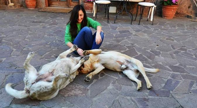Coccole ed amore per i vostri amici a 4 zampe, dog sitter a Firenze