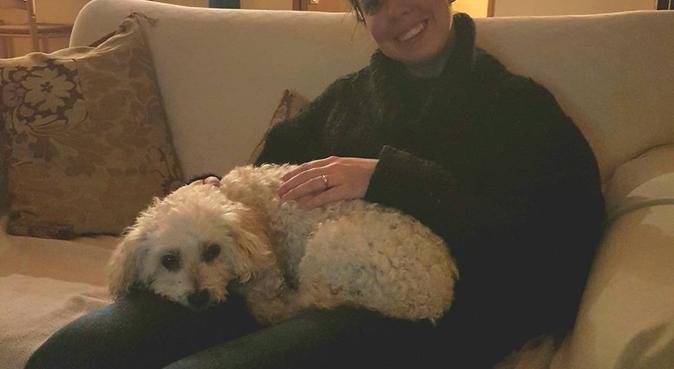 Gassi gehen mit Anna die Australierin!, Hundesitter in Wiesbaden