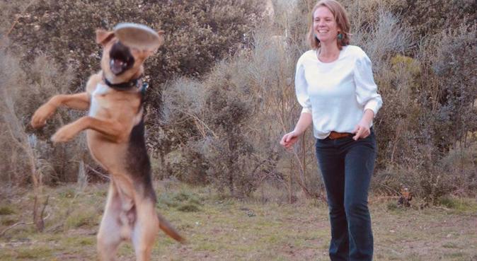 Campamento Perruno Juegos,Cuidado y Amor, canguro en Madrid