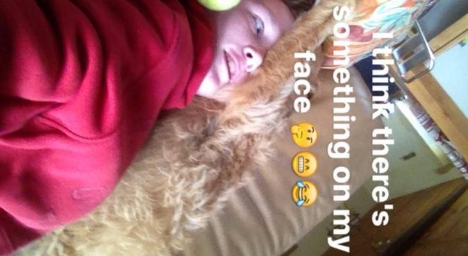 dogger cuddler, dog sitter in Greenwich