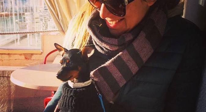Pets heaven, canguro en Palma De Mallorca