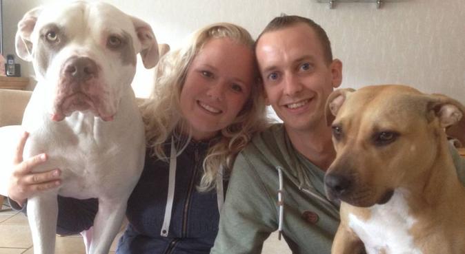 Ervaren uitlaatservice aangeboden, hondenoppas in Berkel en Rodenrijs, Nederland